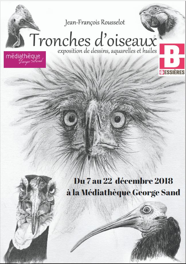 Exposition tronches d'oiseaux